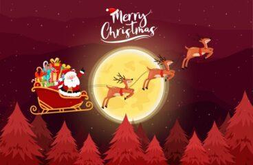 Holiday Saving Guides: Christmas Coupons and Promo Codes
